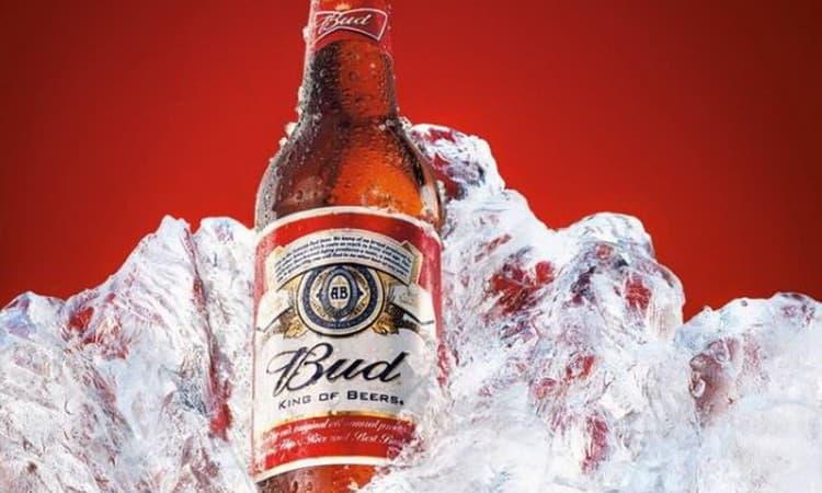 Пиво бад сколько градусов