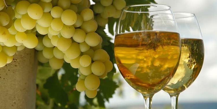 Вино мускат и его особенности