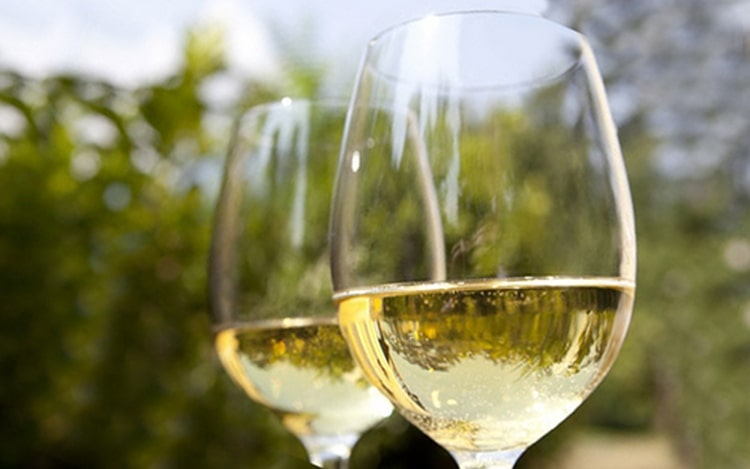 Белое сухое вино пино гриджио из Италии принято подавать в бокалах на тонкой ножке.