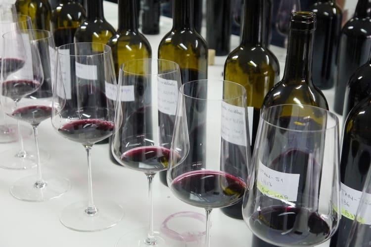 Узнайте все о классификации вина из Португалии.