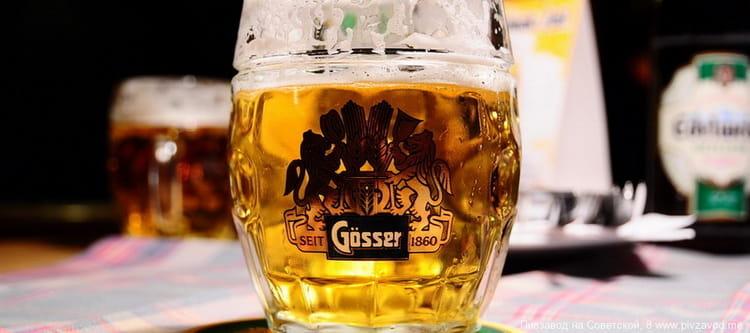 Особенности пива гессер