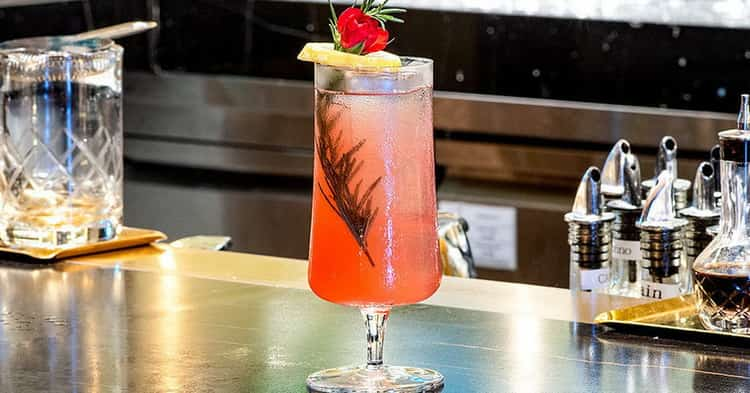 Чем отличается gin fizz рот других коктейлей.