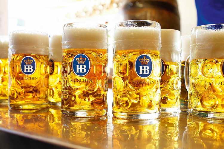 пиво хофброй