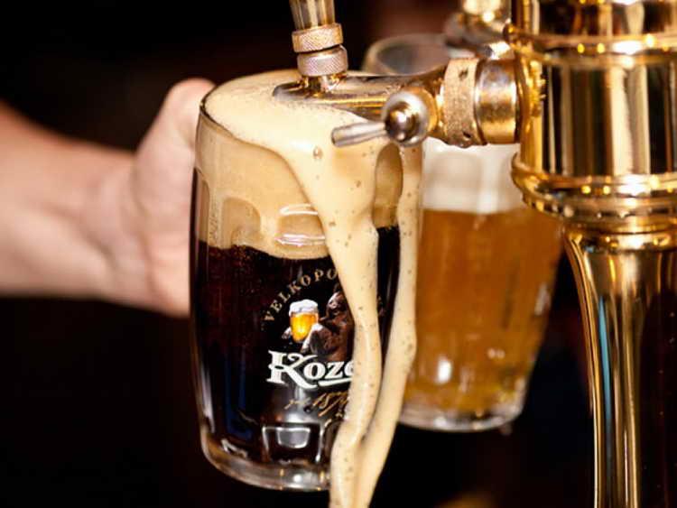 виды безалкогольного пива козел
