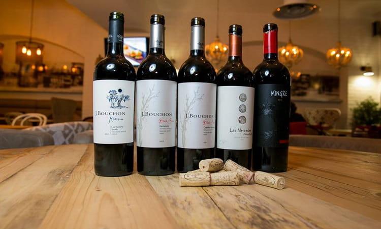 чилийское вино белое сухое и другие виды