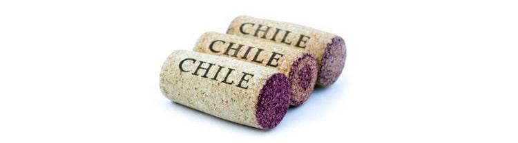 Как делается чилийское красное сухое вино