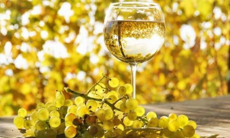 технология производство белого вина