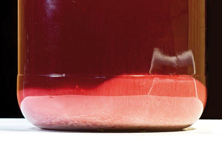 очень часто осадок в вине можно наблюдать, если это домашний прлдукт.