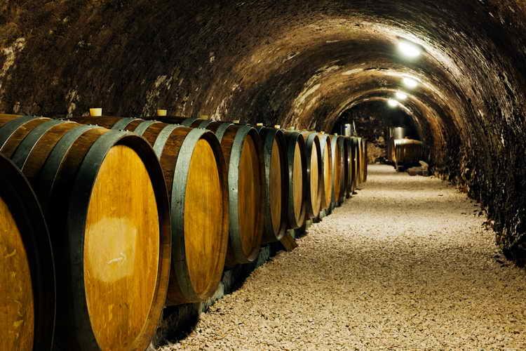история фруктового вина