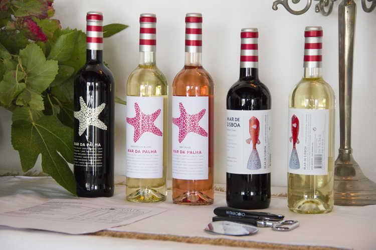фруктовое красное вино