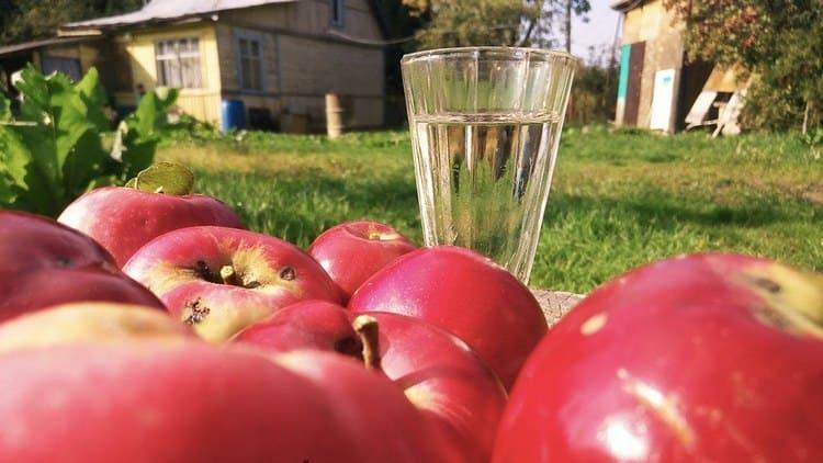 Самогон из яблочного сока получается ароматным и приятным на вкус.