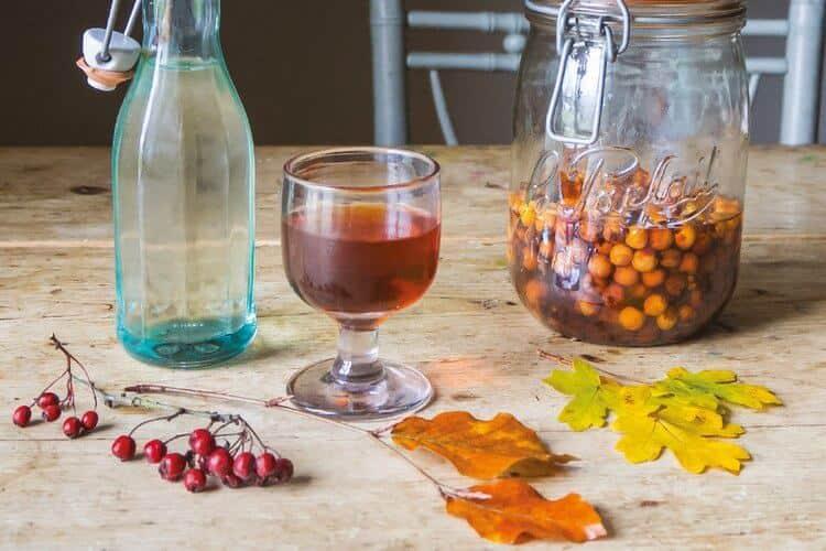 настойка боярышника рецепт приготовления в домашних условиях
