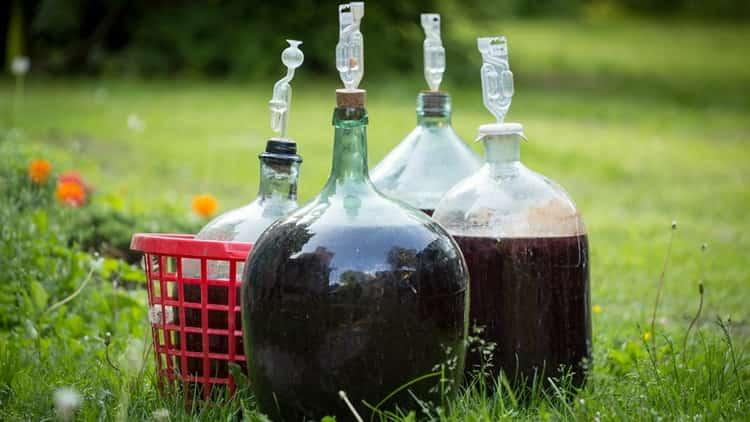 как перегнать вино на самогон
