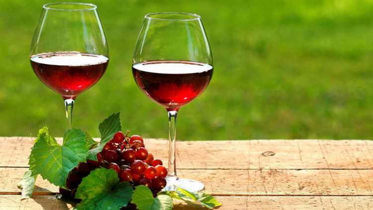 домашнее вино из винограда лидия лучший рецепт