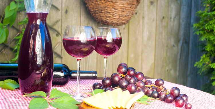 Вино из винограда сорт лидия
