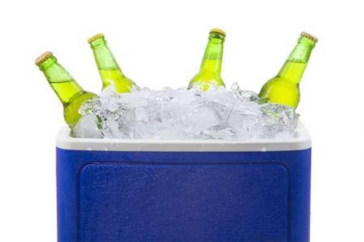 Где купить кулер для пива 5 литров