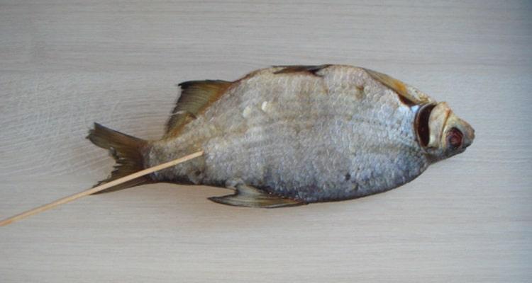 Сушеная рыбка насаживается на шпажку