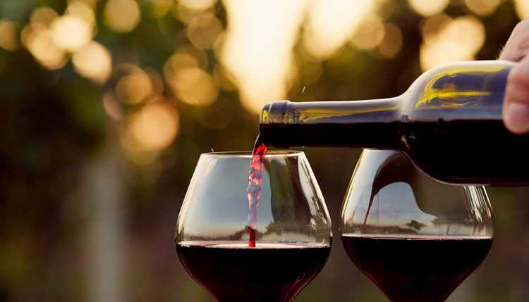 вино черный доктор солнечная долина
