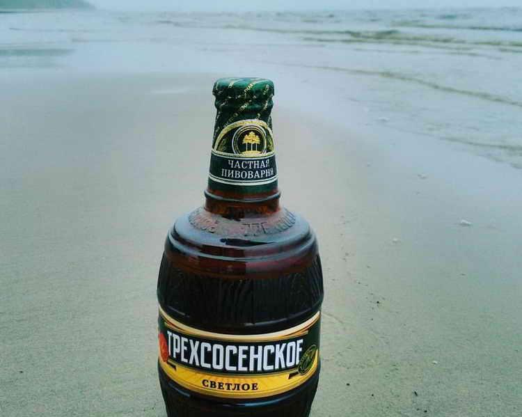 пиво Трехсосенское история завода